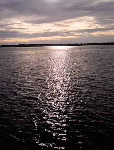 2014.03.29_estuary